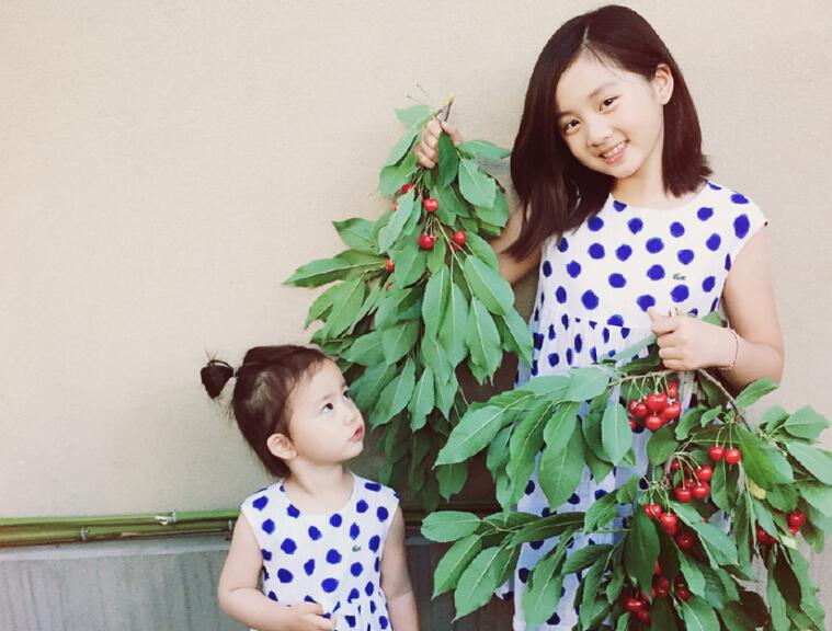 黄多多与妹妹摘樱桃