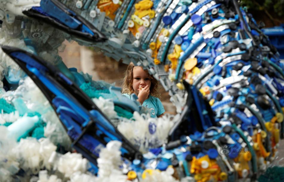 """美国一动物园展出""""海洋垃圾""""艺术品"""
