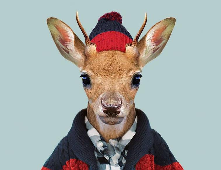 现实版动物城 艺术家将动物扮成人类模样