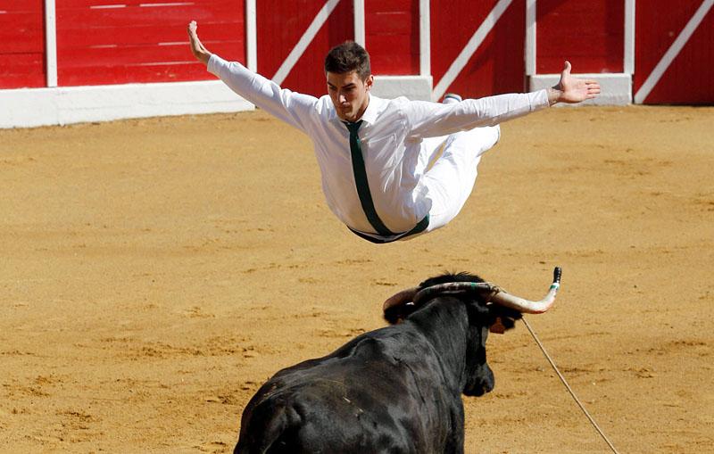 法举办人牛竞技活动 参赛者飞身越牛