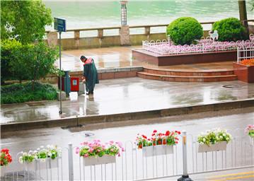 """雨后""""黄玫瑰"""""""
