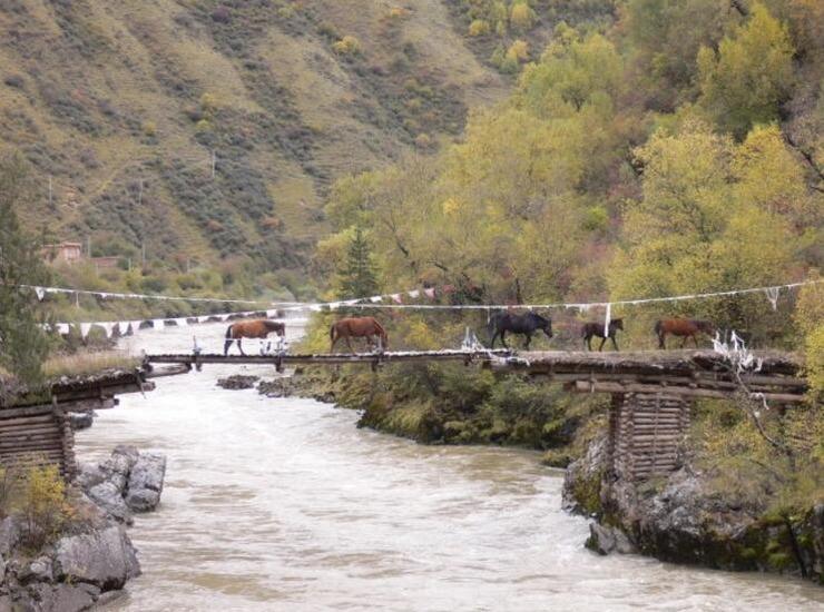震惊世界!中国这座桥竟不用一钉一铁 建造工艺太惊人