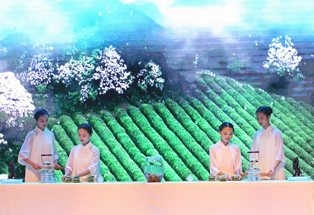 """江西婺源:茶艺大赛展现中国""""茶文化"""""""