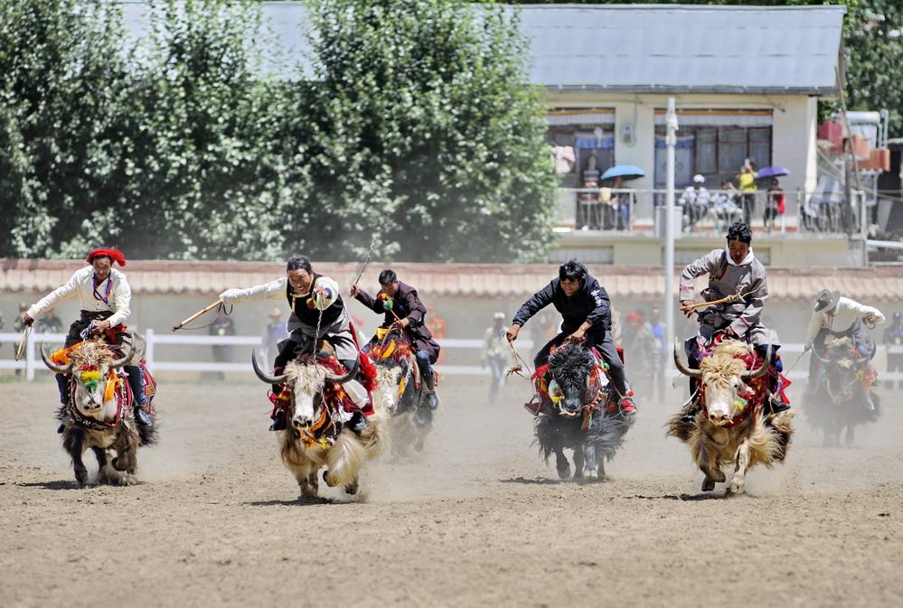 拉萨举行民族传统马术表演及骑牦牛比赛