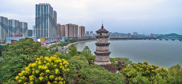 """走马饶城数第一 市区最""""老""""的公园——双塔公园掠影"""