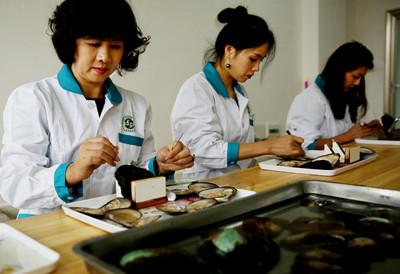 万年县创新珍珠培育方法