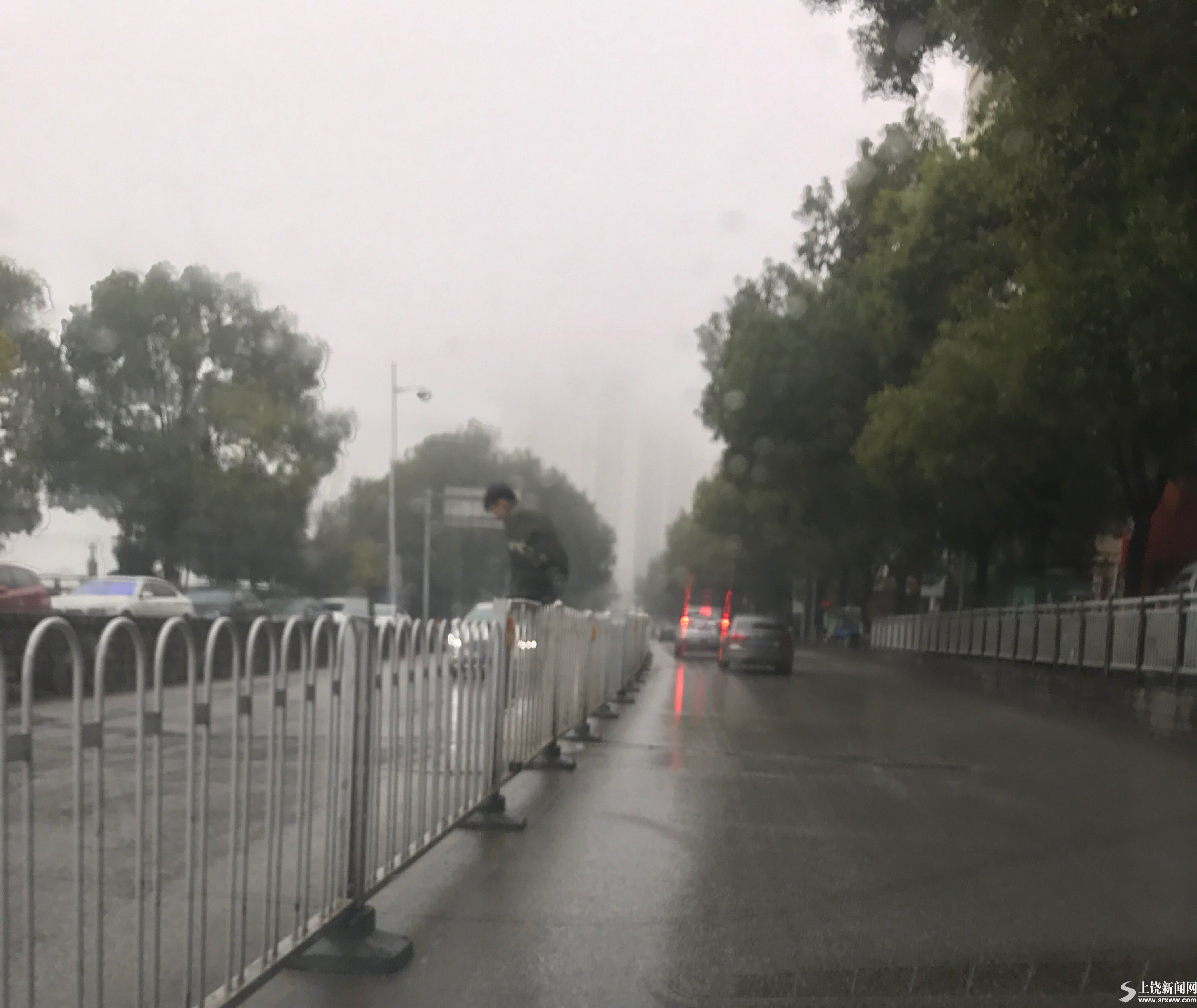 男子翻护栏过马路
