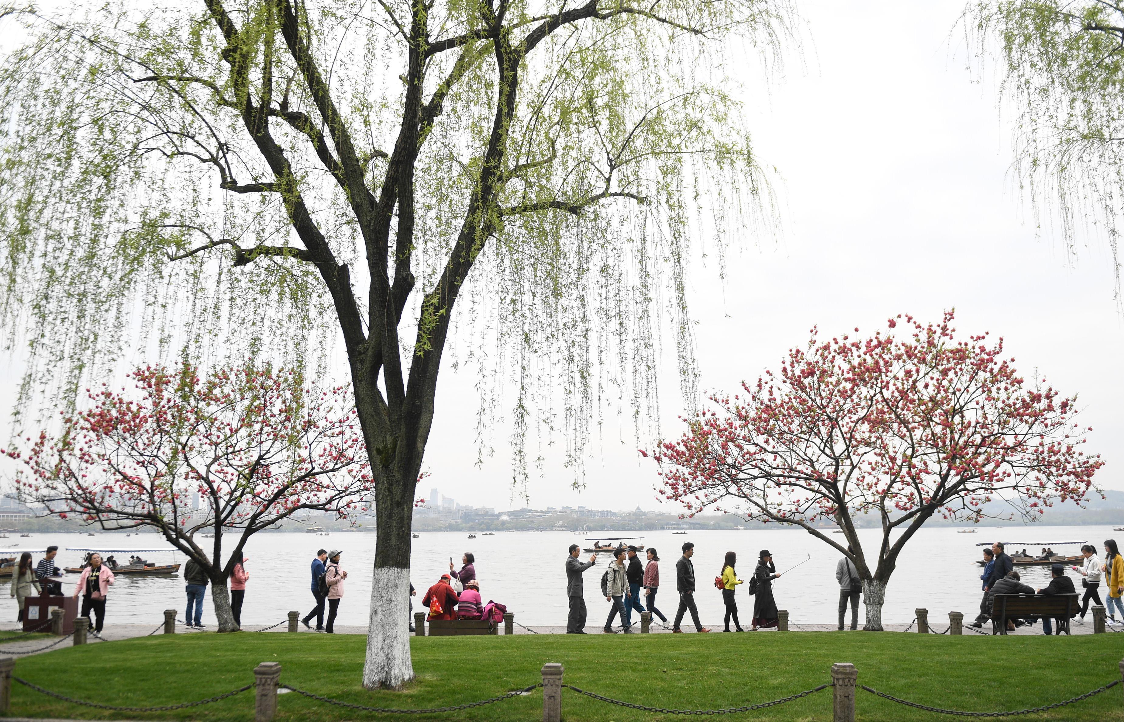杭州西湖:桃红柳绿正当时