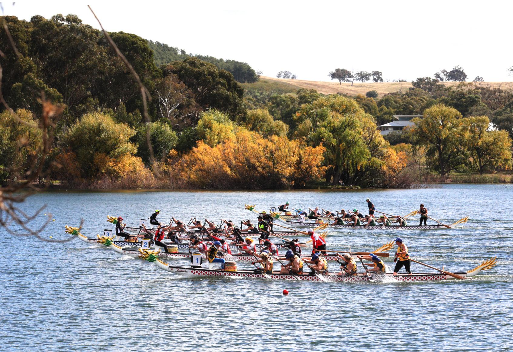 澳大利亚龙舟锦标赛在堪培拉落幕