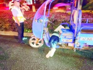 男子酒驾机动三轮车 交警队门口犯困酣睡被查