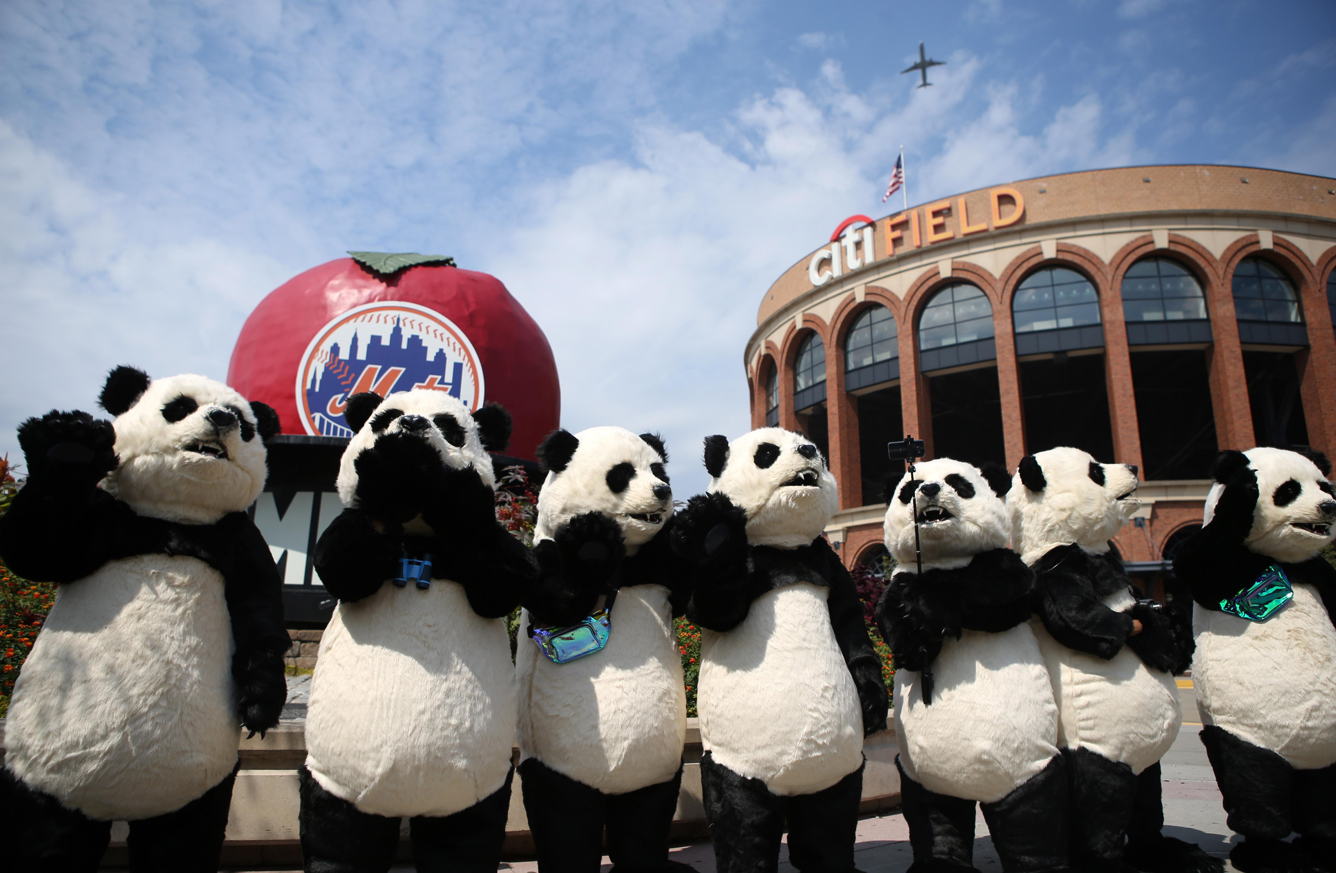 中国花灯将登陆纽约花旗球场 点亮纽约新年