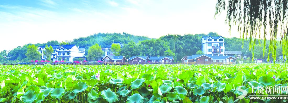 四季有花——横峰全域建设秀美乡村巡礼之一