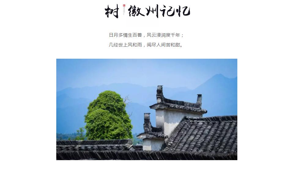 传承徽州经典 | 悦麓开元观堂·中式度假酒店