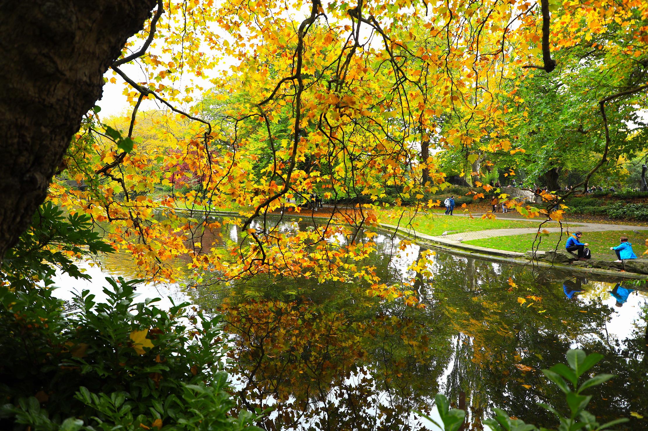 秋天的都柏林