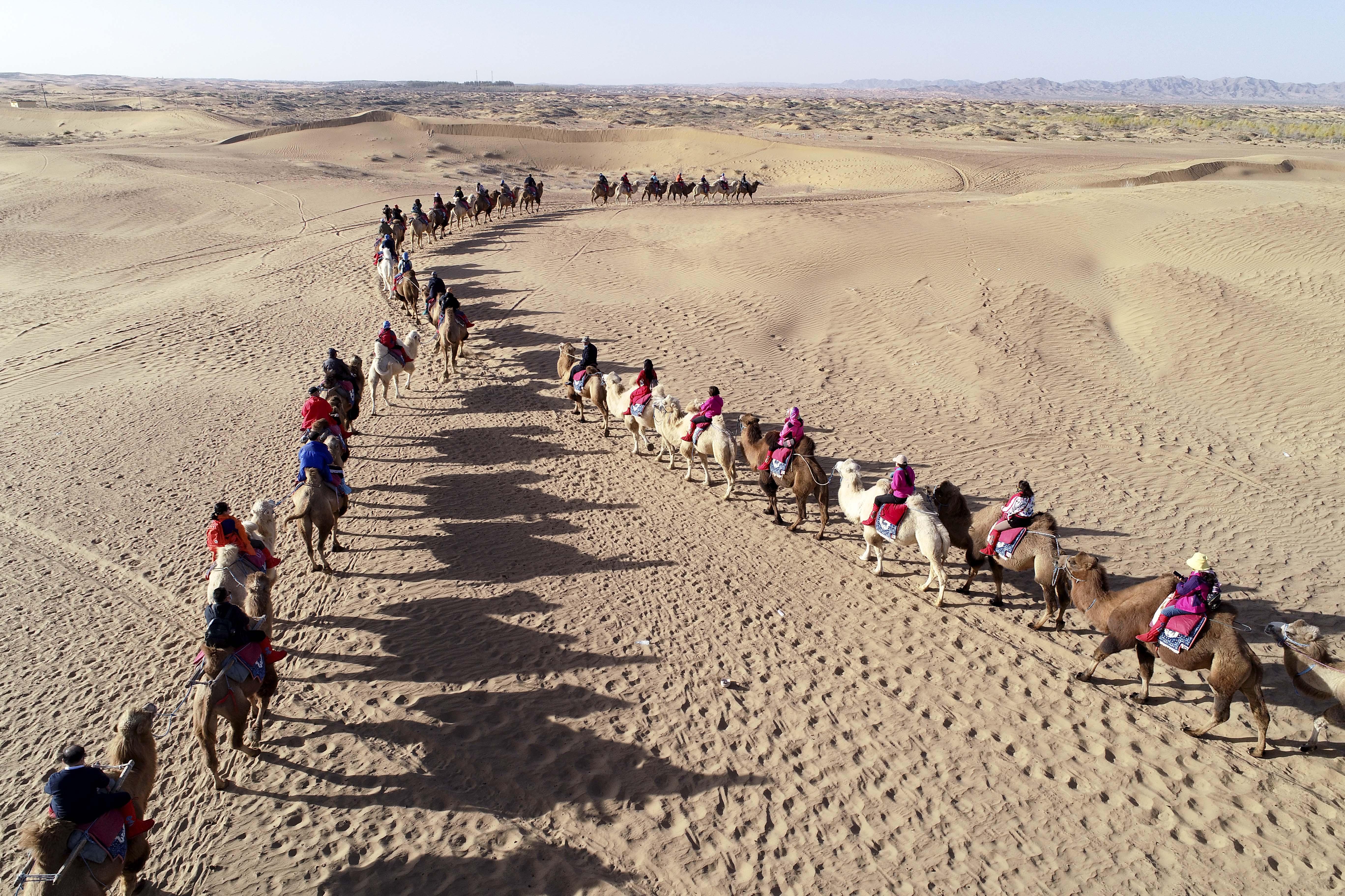 内蒙古阿拉善:金秋大漠旅游旺
