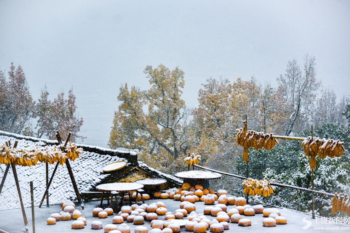 我市多地今冬初雪悄然而至