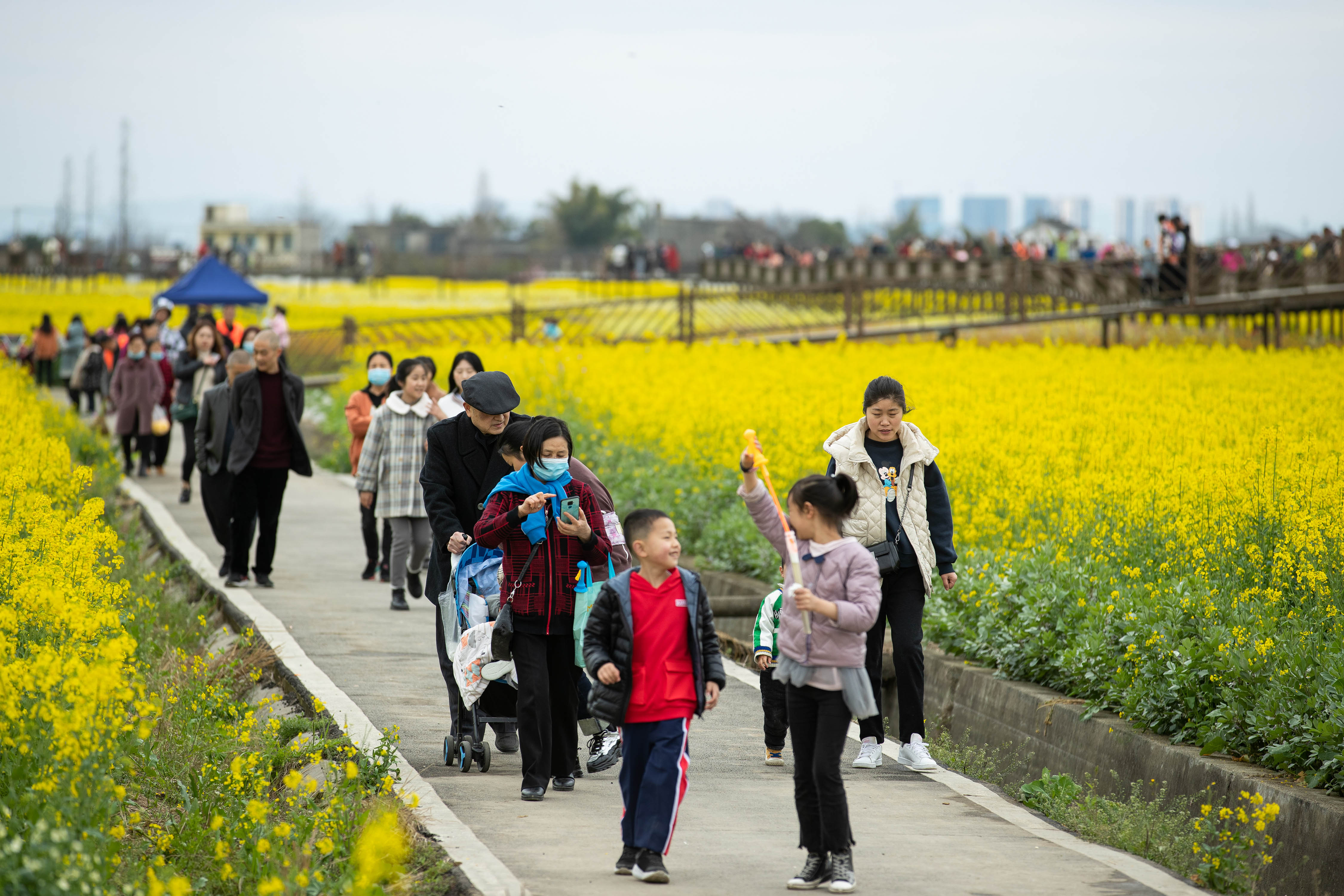 川西平原花季之旅