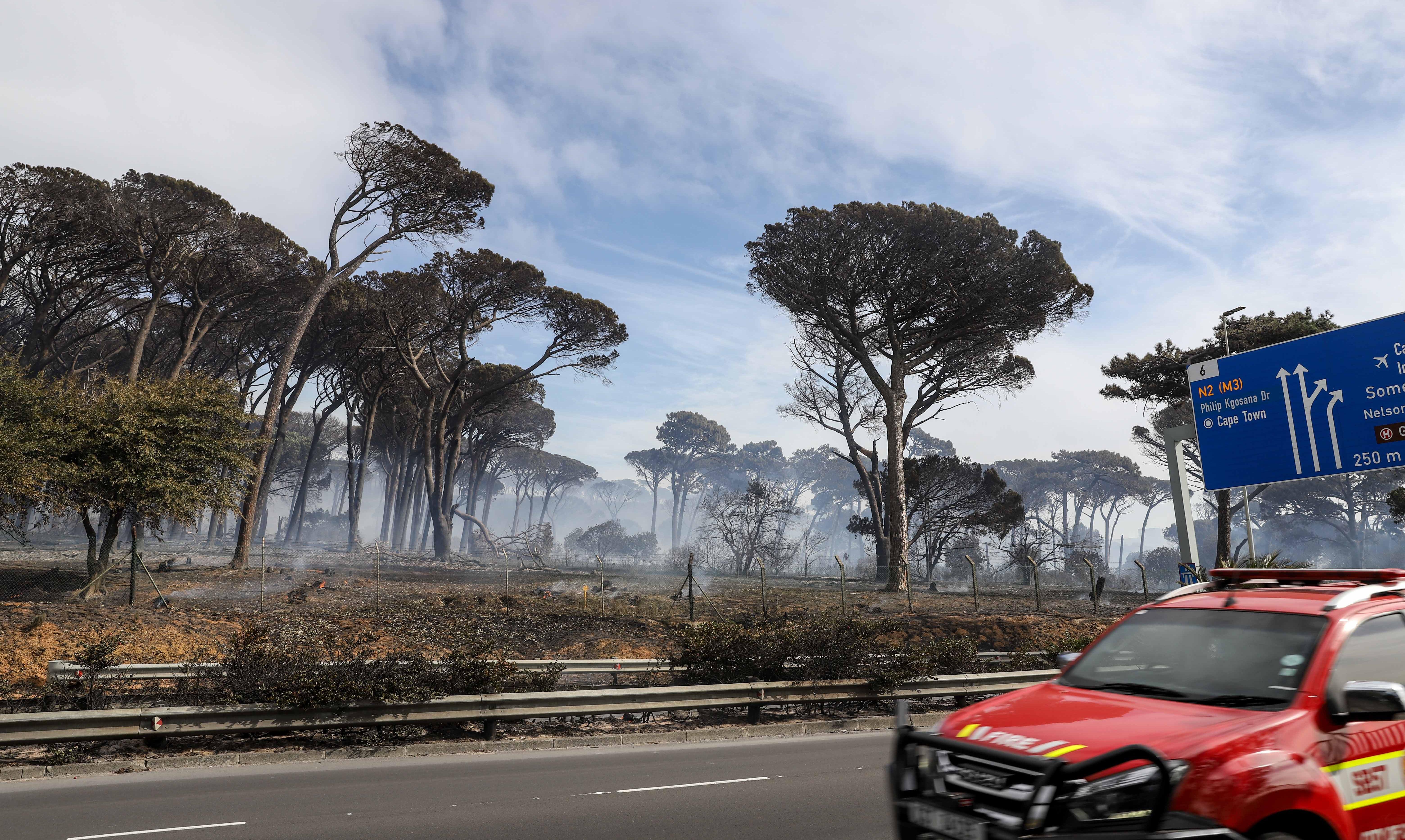 南非桌山国家公园发生火灾